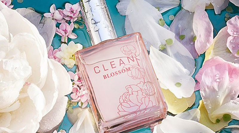 clean-blossom